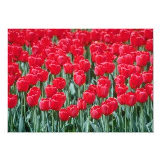 Tulipas vermelhas, flores de Ottawa Convite Personalizados