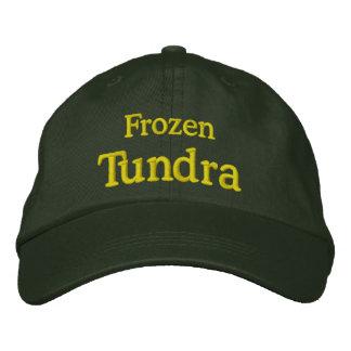 Tundra congelada boné bordado