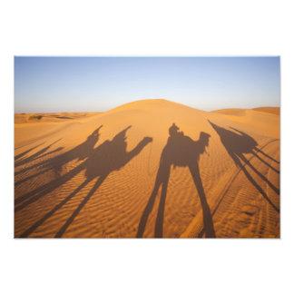 Tunísia, área de Ksour, Ksar Ghilane, ERG grande 4 Impressão De Foto