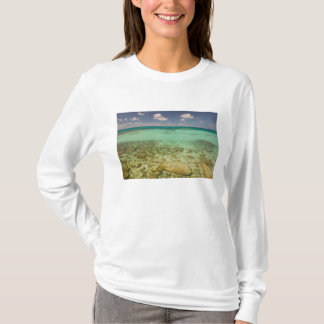 Turcos e Caicos, ilha grande do turco, Cockburn 2 Camiseta