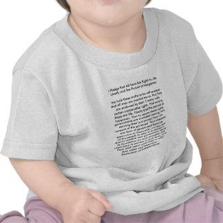 !!! U cria a declaração de independência Camisetas