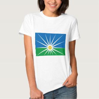 Uberlandia Minasgerais bandeira de Brasil, Brasil Camisetas