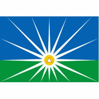 Uberlandia Minasgerais bandeira de Brasil Brasil Fotoescultura