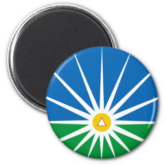 Uberlandia Minasgerais bandeira de Brasil, Brasil Imãs De Geladeira