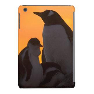 Um adulto e um pintinho do pinguim do gentoo são capa para iPad mini retina