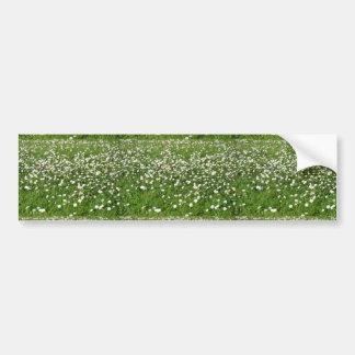 Um ar de primaveras adesivo para carro
