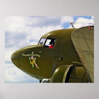 Um avião nomeado cruz do sul posters