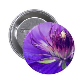 Um Calyx da natureza floral azul das belas artes Bóton Redondo 5.08cm