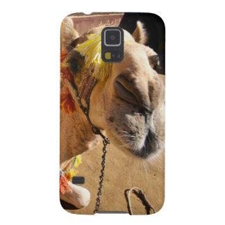 Um camelo amigável espera seu cavaleiro seguinte,  capinhas galaxy s5