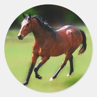 Um canter dos cavalos adesivo em formato redondo