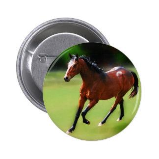 Um canter dos cavalos pins