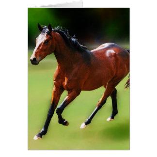 Um canter dos cavalos cartão comemorativo