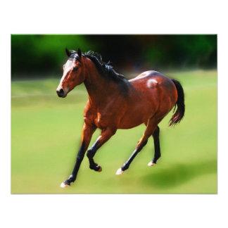 Um canter dos cavalos convites personalizados