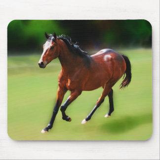 Um canter dos cavalos mousepad