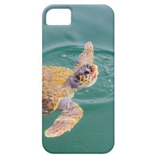 Um Caretta grande da tartaruga de mar da natação Capa Para iPhone 5