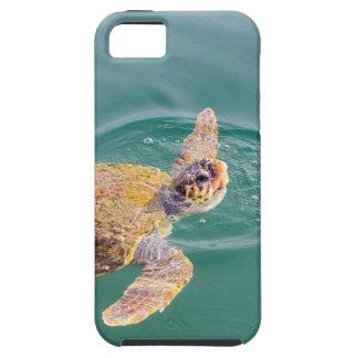 Um Caretta grande da tartaruga de mar da natação Capa Tough Para iPhone 5