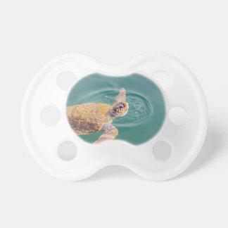 Um Caretta grande da tartaruga de mar da natação Chupeta