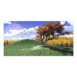 Um cartão com fotos do monte da árvore cartão com foto