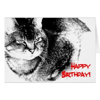 Um cartão de aniversário - gato Metade-Burmese