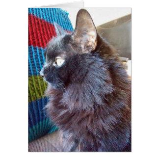 Um cartão de nota do gato preto