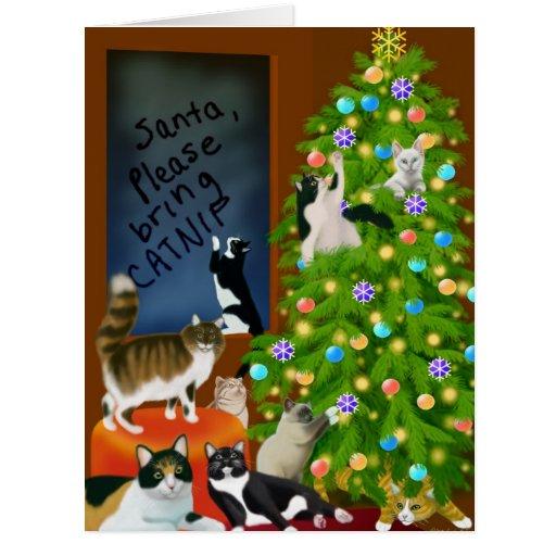 Um cartão grande do Natal felino da família
