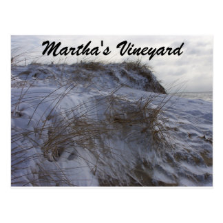Um cartão nevado do Martha's Vineyard da praia