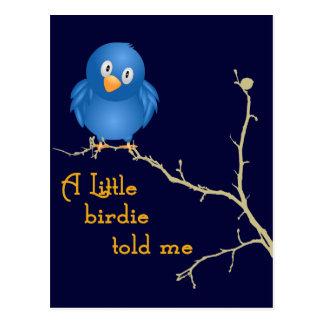Um cartão pequeno do Momism do passarinho