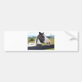 Um cavalo bonito adesivos