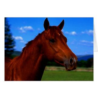 Um cavalo que está orgulhoso cartão comemorativo