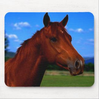 Um cavalo que está orgulhoso mouse pad
