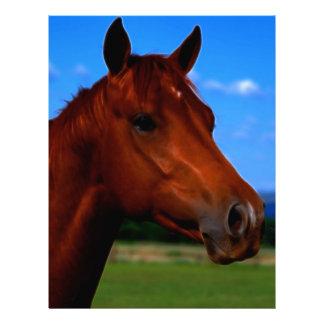 Um cavalo que está orgulhoso modelo de papel de carta