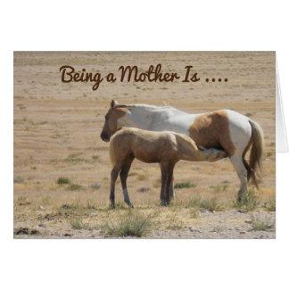 Um cavalo que sere de mãe a seu cartão feliz do