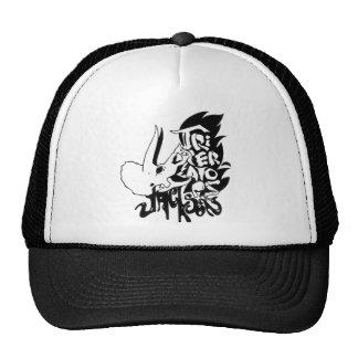 Um chapéu do camionista, se você é nesse tipo de c boné
