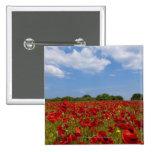 Um cheio do campo de flores vermelhas bóton quadrado 5.08cm
