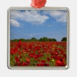 Um cheio do campo de flores vermelhas ornamento