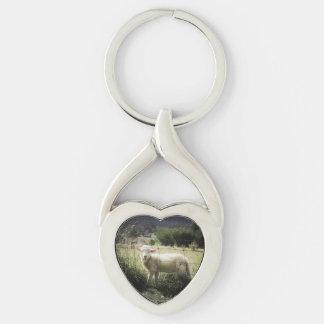 um cordeiro branco pequeno atrás de uma cerca em chaveiro coração torcido cor prata