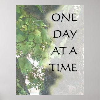 Um dia em um impressão da árvore do sicômoro do te