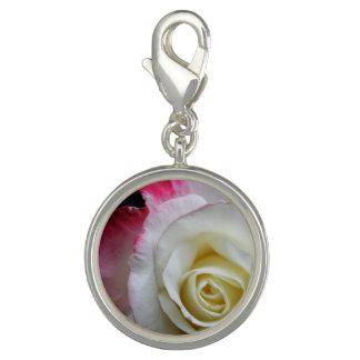 Um fim bonito do encanto acima de um rosa vermelho photo charm