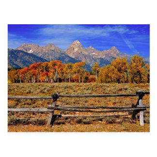 Um momento em Wyoming no outono Cartão Postal