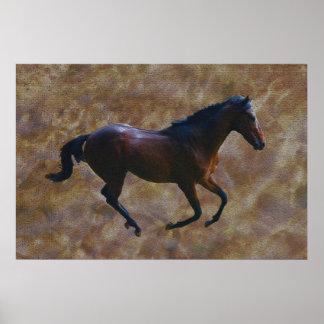 Um porte dos cavalos posters