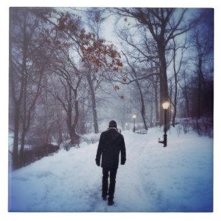Um trajeto frio no Central Park