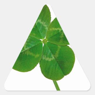 Um trevo de quatro folhas adesivo triangular