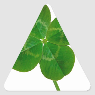 Um trevo de quatro folhas adesivos em forma de triângulo