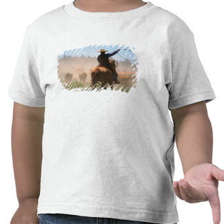 Um vaqueiro que trabalha para fora o rebanho no t-shirts