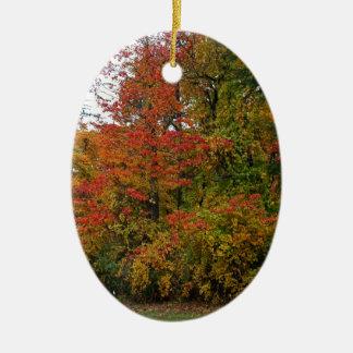Um vento delicado em Wildwood Ornamento De Cerâmica Oval