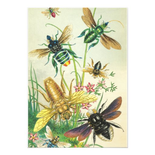 Um zumbido do convite de festas das abelhas