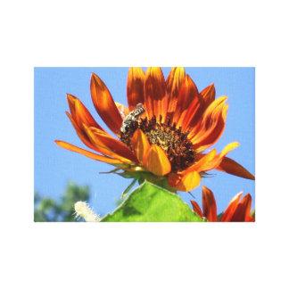 Uma abelha do mel em um girassol 1 da beleza do ou impressão em tela canvas