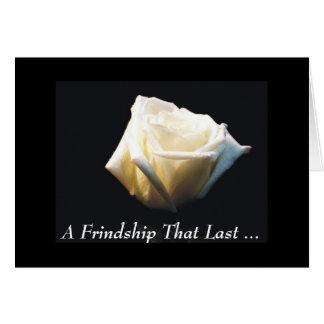 Uma amizade esse último… cartões