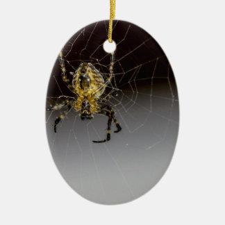 Uma aranha e seu da Web fim acima Ornamento De Cerâmica