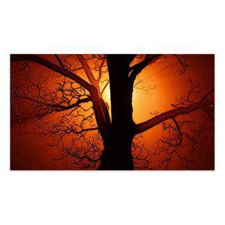 Uma árvore desencapada no por do sol modelos cartões de visitas